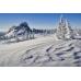 """Заказать """"свой тур"""" для отдыха по Алтаю, Алтайскому краю, Кемеровской области"""